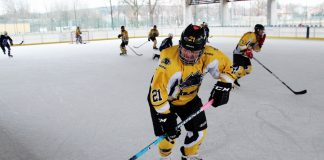 Kojoty Suchedniów - Świętokrzyski Piknik Hokejowy