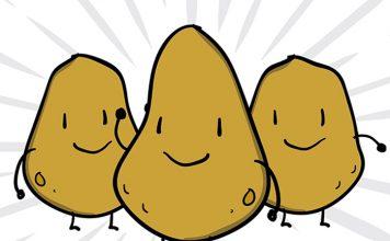 swieto pieczonego ziemniaka skarzysko 2018
